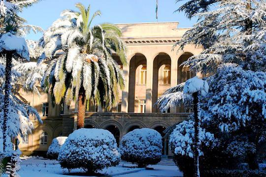 Зима в Сухуми