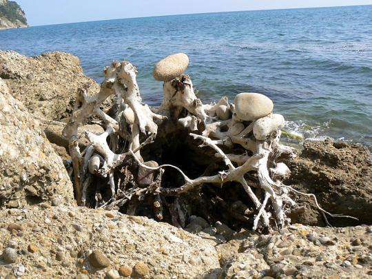 На пляже в Гудауте