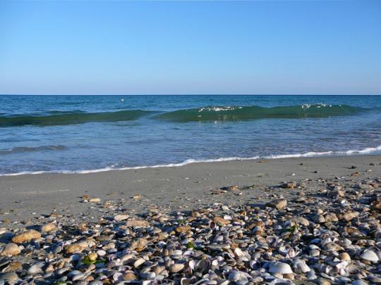 Черное море в Албене