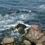 Черное море, Созопол