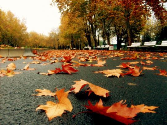 Осень в Бургасе