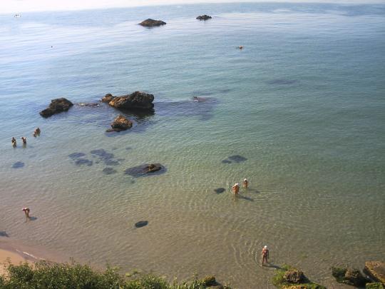 Море летом, Русалка