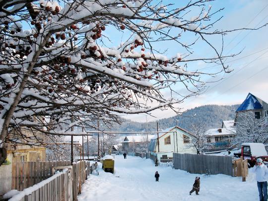 Улочки в Бакуриани