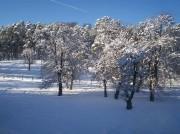 В Бакуриани - зима!