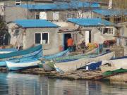 Рыбацкие лодки