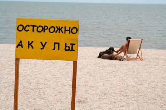 Осторожно акулы!