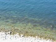 Черное море, Кабардинка