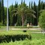 Парк в Адлере