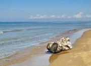Пляж в Джемете