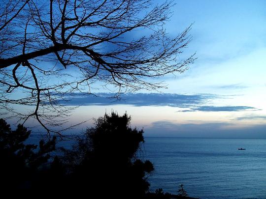 Вечернее море, Сочи