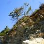Скалы в Джубге