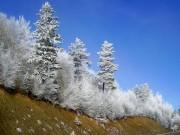 Синоп, пригород, зима