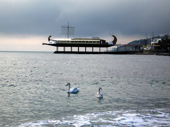 Лебеди в Ялте