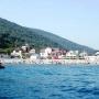Дельфин: Пляж в Абрау Дюрсо