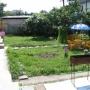 Атланта: Площадка для барбекю