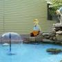 Атланта: Водоемчик во дворе
