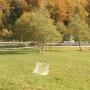 Шахе: Спортивное поле